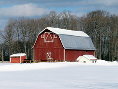 Red barns in winter, continued (yooperann) Tags: red barn outbuildings michigan upper peninsula winter snow woods