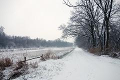 De Worp, Drimmelen (JdRweb) Tags: drimmelen nederland netherlands snow sonydscrx100 winter