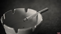 Nasty Habits (MBates Foto) Tags: ash ashtray availablelight blackandwhite bokeh cigarette daylight existinglight indoors macro minimalist monochrome nikkorlens nikon nikonais nikond810 nikonfx tobacco spokane washington unitedstates 99203