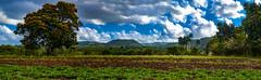 The Panoramas - Sierra Meneses en Yaguajay (lezumbalaberenjena) Tags: yaguajay cuba sancti spiritus 2019 lezumbalaberenjena san jose lago sierra meneses mayajigua