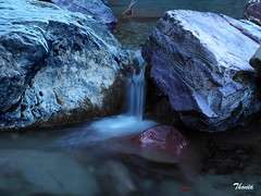 Parque Nacional de Ordesa (Gatodidi) Tags: parque nacional ordesa valle aragon huesca bosque arboles agua rio cascada garganta natura naturaleza landscape paisaje paisatge