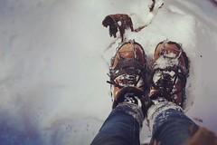 My new best friend: ice cleats. (jessalynn_sammons) Tags: canoncanada shotoncanon canon exercise healthy lovenature nature explore snow winter boots hike brucetrail thebrucetrail hiking