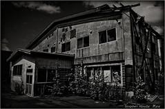 Cold Storage Company... (SHADOWY HEAVEN) Tags: 09090270a0002 北海道 hokkaido 日本 ファインダー越しの私の世界 写真好きな人と繋がりたい 写真撮ってる人と繋がりたい 写真の奏でる私の世界 写真で伝えたい私の世界 coregraphy japan tokyocameraclub igers igersjp phosjapan picsjp 空 雲 モノクロ モノクローム モノクロ写真 白黒写真 bnwlife bnwdemand igersbnw noirshots monochrome mono monotone blackandwhite bw bnw blackwhite noiretblanc japaninbw blackwhitephotos dark outdoor weeds grass abandoned decay forgotten