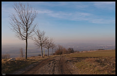 Roz 2019 (14) (***RM***) Tags: czechrepublic moravia zidlochovice rozhledna country nature winter outside hike walking