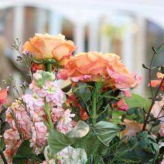 101. Arboretum flower shower (Misty Garrick) Tags: arboretum universityofminnesotalandscapearboretum landscapearboretum flowershow