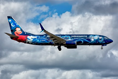 """C-GWSZ, WestJet Airlines, """"Walt Disney World - Micky Mouse,"""" Boeing 737-8CT, KFLL, February 2019 (a2md88) Tags:"""