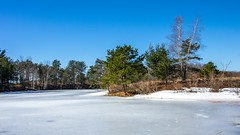 Won't Be Long Now (Bud in Wells, Maine) Tags: daybrookpond kennebunk kennebunkplains maine winter ice trees frozen pond