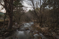 Cazando imágenes. (Amparo Hervella) Tags: lapedriza comunidaddemadrid españa spain paisaje río agua árbol bosque naturaleza roca largaexposición d7000 nikon nikond7000