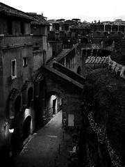 A City in the city (max832) Tags: fiumeinpiena pontesangelo monument city micro43 rome palazzi cultura cielo visita postcards museo olympus fotografia omd tevere buildings castelsantangelo blackwhite buildingd mft sky città sanpietro eroma em10iii panorama cupola roma 2019 italy 25mm18 dome