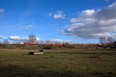 Metrans 386 010 + Güterzug/goederentrein/freight train  - Potsdam Wildpark West (Rene_Potsdam) Tags: metrans potsdamwildparkwest brandenburg deutschland railroad treinen trenes trains züge europe europa br186