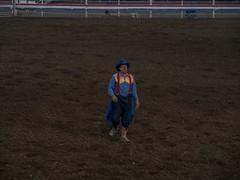 0634-J20 - Yellowstone - Cody-1808161914 (Chouettes de Crolles) Tags: 2018usa 2018usaj20yellowstonecody cody lieux usa vacancesété wyoming étatsunis us