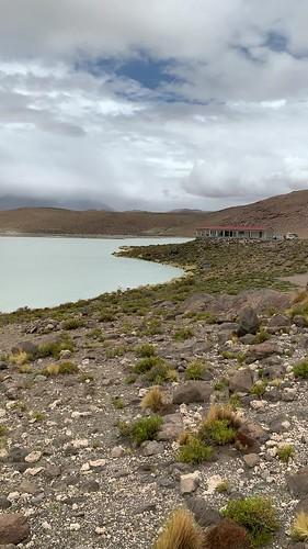 Stinking Lake (Laguna Hedionda) at 4,121m. (13,520.34 ft.), Bolivian Highlands (Altiplanos Boliviano), Potosí, Bolivia.
