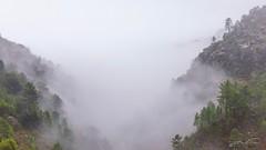 The valley (jorgeverdasca) Tags: dark goth woodland landscape misty mist foggy fog mountains forest nature gerês portugal