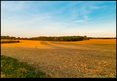 180910-9023-XM1.JPG (hopeless128) Tags: 2018 fields sky eurotrip trees france nanteuilenvallée charente fr
