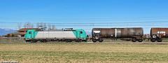 NC E.483.00*. Grisignano di Zocco (Ivan Furlanis) Tags: treno train zug ferrovia bahn eisenbahn rail railway railroad italia italy italien veneto