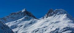 Arlberg: Pfaffeneck und Pöngertlekopf (CBrug) Tags: pöngertlekopf pfaffeneck lech lechquellengebirge vorarlberg österreich zug winterlandschaft berge mountains arlberg alpen alps austria gipfel peak peaks schnee snow