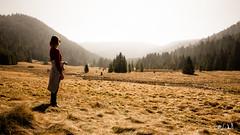 Vosges, Belbriette (chicos54) Tags: vosges belbriette tourbière lorraine randonnée nature paysage landscape lumière foret forêt wood vogezen vogesen beauté