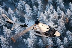 Airbus Helicopters H160 (lloydh.co.uk) Tags: airbus helicopters winter snow cold helicopter aviation finland lapland airtoairphotography airtoair h160 h145 airbushelicoptersh160 airbushelicoptersh145 aviationphotography aviationphotographer nikon d810 ukaviationphotography ukphotographer