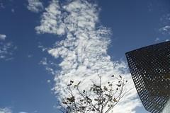 Bon Dimarts de núvols a la Vila Olímpica de Barcelona. Vista parcial del Peix d'Or  de Frank Gehry, Barcelona. (heraldeixample) Tags: heraldeixample bcn terramar sitges barcelona spain espanya españa spanien catalunya catalonia cataluña catalogne catalogna núvols clouds nubes skyer nuages cymylau nuvole 雲 nuvens nori 云 облака wolken nwn martesdenubes paisaje paisajeurbano landscape urbanlandscape paisatge paisatgeurba dimartsdenuvols nicewonderfultuesdayclouds vilaolimpica olympicvillage 1992 1992games jocs1992 juegos1992 jjoo1992 ngc albertdelahoz