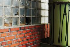Green + Orange (frankdorgathen) Tags: alpha6000 sony sony35mm urbex texture textur rheinland düsseldorf harbour mediaharbor medienhafen verfall decay glas glass stein brick stone wand wall