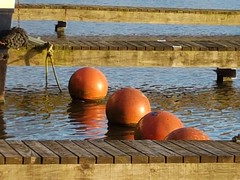 Buoys at Barton Turn Marina (DorsetBelle) Tags: buoys bartonturnmarina bartonunderneedwood marinas canals trentandmerseycanal