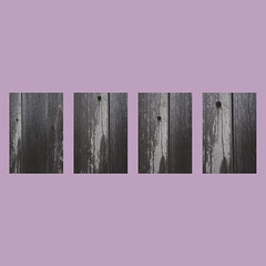 day 6 (Randomographer) Tags: project365 project 365 polyptych image scraps 4 four sections panels tetraptych quadriptych blur pink gray hard up down left right dry light dark abstract texture wood wooden grain weathered worn day 6 2019 design graphic