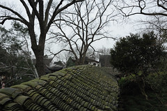 DSC_1817 (Hong Z) Tags: china nikond700 28300mmf3556 suzhou 苏州 travel garden 园林