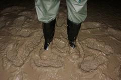 Lots of mud! (essex_mud_explorer) Tags: noradolomite noradolomit nora boots wellies wellingtons wellingtonboots wellington welly gummistiefel gumboots rainboots rainwear rubberboots rubberlaarzen muddy mud welliesinmud muddyboots muddywellies creek estuary saltmarsh marshes tidal mudflats