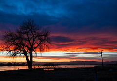 30/365 2019 (d2roberts) Tags: 365the2019edition 3652019 day30365 30jan19 windsor windsorlake colorado tree sunse bridge mountains clouds