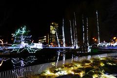 Праздничный Дунайский парк (tatianatorgonskaya) Tags: сербия новисад новыйгод новыйгодвсербии новыйгодвновомсаде балканы путешествие европа блог блогопутешествиях блогожизнизарубежом ярмарка новогодняяярмарка праздничнаяярмарка рождественскаяярмарка зимавсербии зимавновисаде праздники праздникивсербии srbija serbia balkans balkanstravel balkan europe novisad christmas воеводина vojvodina