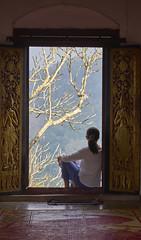 Zen! (Tom Helleboe) Tags: buddism monastery travel luangprabang laos