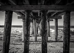 Under the Cayucos Pier B&W (CDay DaytimeStudios w /1 Million views) Tags: beach ca california cayucos cayucousca coastline highway1 landscape morning ocean pacificcoast pacificcoasthighway pacificocean pier water