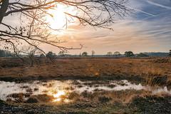Hageven 4 (Geert E) Tags: landscape nature sunset water hageven pelt reflection sun pont bog