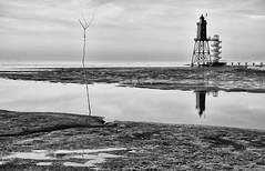 The beacon (Zoom58.9) Tags: sky clouds sea beacon lighthouse tower water river reflection landscape nature monochrome bw maritim europe germany geestland niedersachsen dorum himmel wolken meer leuchtfeuer leuchtturm turm wasser fluss reflektion landschaft natur europa deutschland sw sony