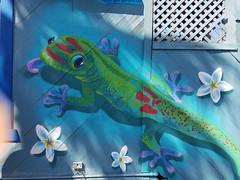 Gecko mural in Kailua-Kona (BarryFackler) Tags: mural painting art streetart wall artwork paint gecko daygecko golddustdaygecko phelsumalaticauda mooala reptile scandinavianshaveice lizard shadows kailuakona aliidrive hawaii hawaiiisland hawaiicounty hawaiianislands polynesia bigisland tropical sandwichislands 2018 barryfackler barronfackler plumeria flowers animal kona northkona westhawaii