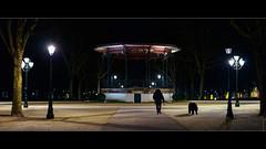 La promenade de l'ours (Alexandre LAVIGNE) Tags: pentaxk1 smcpentaxfa50mmf14 saintquentin format2351 2019 hiver kiosque ambiance chien cinémascope k1 lampadaires lumière nuit promenade scène picardiehautsdefrance