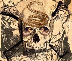 'Surprise!' (tishabiba) Tags: tish saucy skull artwork conceptual perception illusion surrealism surreale surreal