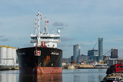 Stolt Auk (frisiabonn) Tags: vehicle ship water wirral liverpool england uk britain marine vessel river mersey merseyside sea shore waterfront maritime boat outdoor birkenhead stolt auk tankers products chemical oil tank cargo docks harbour east west float
