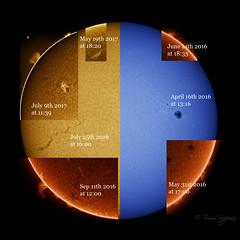 Labeled H-alpha and CaK collage (Tommi R) Tags: sun sunspot solar halpha cak filament protuberance