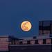 A Super Moon (Explore 3/33/2019 Thank You!)