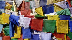United Colors of Prayer Flags (Eye of Brice Retailleau) Tags: photographe no filter francais parisien adventure parisian photographer travel traveler photography photographie french voyage visit voyageur angle home tour brice retailleau quintessence de voisinage bright website backpack life backpacker beauty best composition perspective pure light colorful colourful couleurs scenic trip du monde around world earth wonderful beautiful gorgeous amazing journey destination tourisme tourism backpacking macro texture pattern lines colors colours couleur multicolore prayer flags drapeaux priere india inde ladakh himalaya himalayas buddhism buddhist