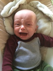 """Sam Cries in His Bassinet • <a style=""""font-size:0.8em;"""" href=""""http://www.flickr.com/photos/109120354@N07/46565823214/"""" target=""""_blank"""">View on Flickr</a>"""