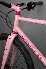4U0A7765.jpg (peterthomsen) Tags: coveypotter envecomposites pink chrisking scrambler steel rodeolabs nahbs caletti