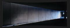 Da, wo keiner alleine hin geht (einfache Fotomomente) Tags: panasonic dmcg6 ƒ35 140 mm 16 400