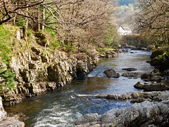 In the distance (lesleydugmore) Tags: swallowfalls wales northwales snowdonia britain uk europe water river rocks trees green house whitewater betwsycoed outside outdoor rural countryside serene scenic picturesque riverside