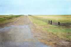 Nowhere...middle of (Candy McDonald) Tags: texas road prairie painterly nikon nikonphotography takenfromtheroad landscape digitallandscapeart greatplains fineartphotography texturedphotography textures photoshop photomanipulation nikcollection topazstudio americathebeautiful