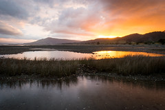 The last free camp (Thibaud Chanfray) Tags: nz newzealand nouvellezelande roadtrip mountain sea backpack travel explore discover sunset reflection landscape nikon