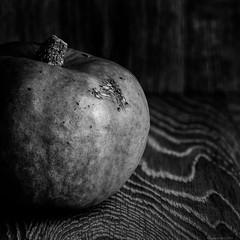 dark pumkin (rich lewis) Tags: mono monochrome blackandwhite food pumpkin richlewis