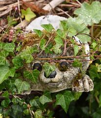 Hiding (clarktom845) Tags: hedgehog scotland ornament nikon