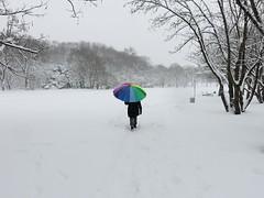 DSC02138 (McMunich) Tags: mcmunich munich münchen germany winter westpark kurios skurril witzig